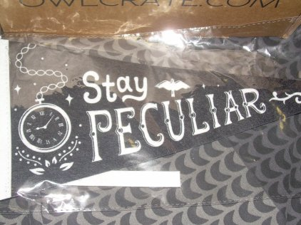 Miss Peregrine's-inspired Felt Pennant Flag (designed by Risa Rodil)